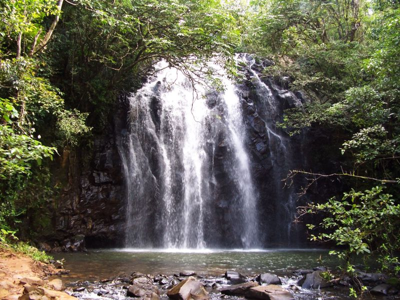 Cairns Waterfalls