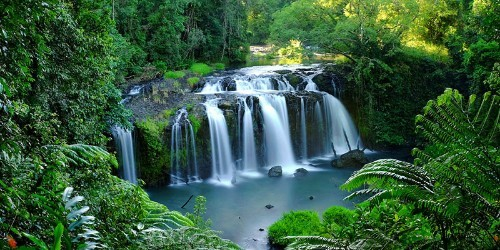 atherton tablelands backpacker tours