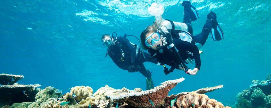 diving in cairns